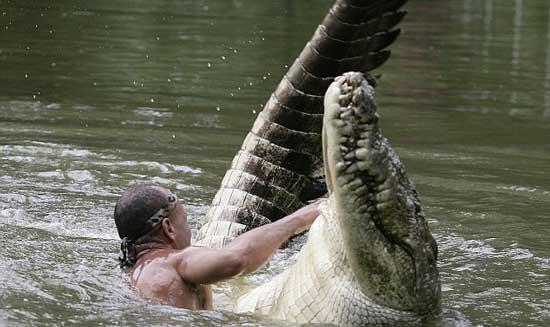 تصاویری فوق العاده از دوستی یک انسان با تمساح!! ، www.irannaz.com